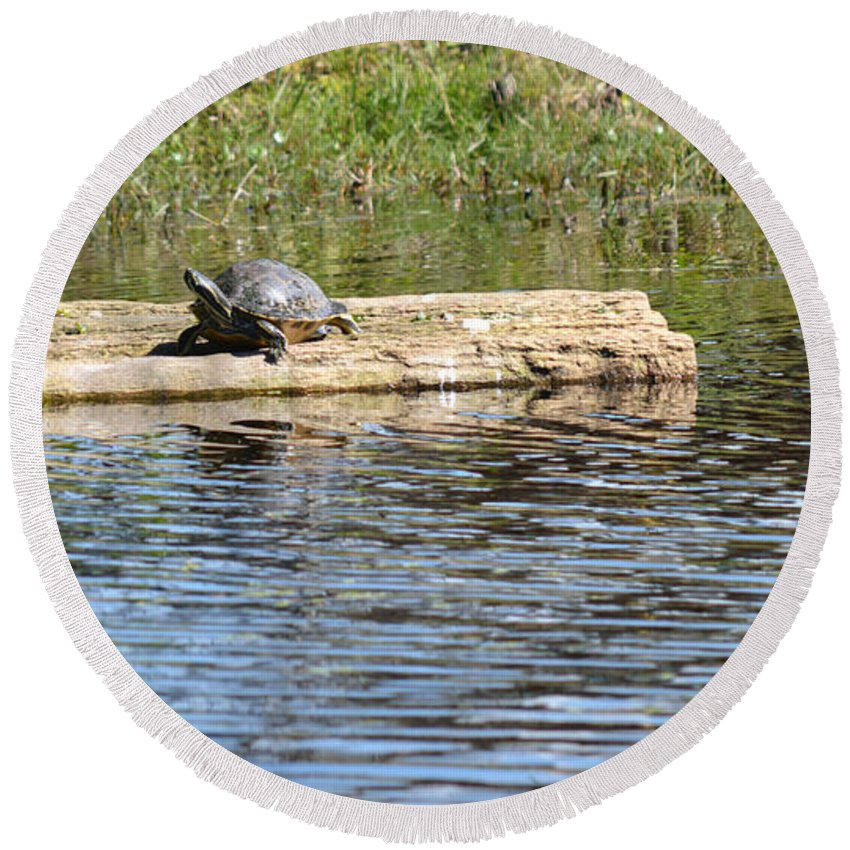 Florida Round Beach Towel featuring the photograph Turtle Float by Linda Kerkau