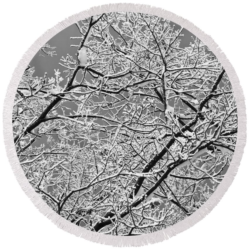 Abstract Round Beach Towel featuring the photograph Winter Tree Scene by Dan Radi
