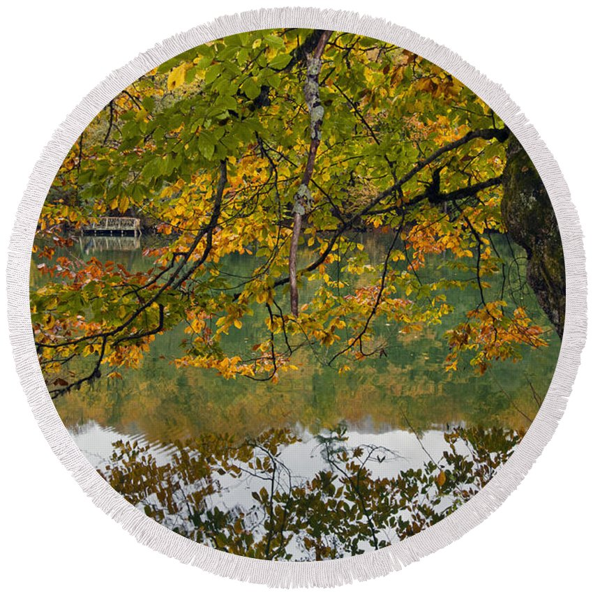 Nature Round Beach Towel featuring the photograph Fall Colours by Ayhan Altun