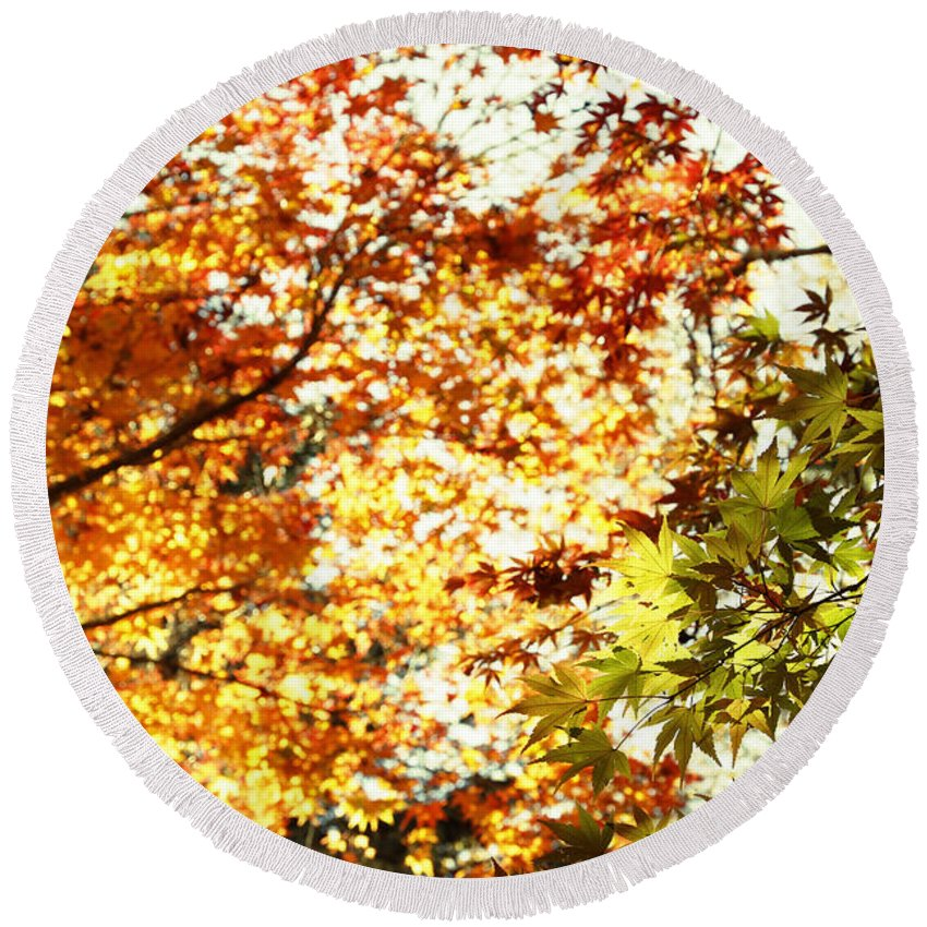 Autumn Round Beach Towel featuring the photograph Autumn by Les Cunliffe