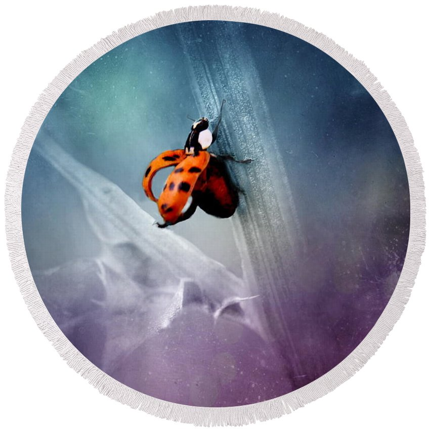Ladybug Round Beach Towel featuring the photograph Ladybug by Heike Hultsch