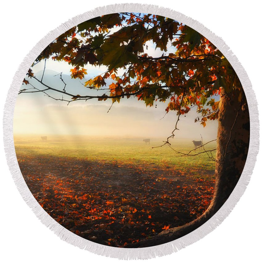 Tree Round Beach Towel featuring the photograph Autumn Tree by Mats Silvan