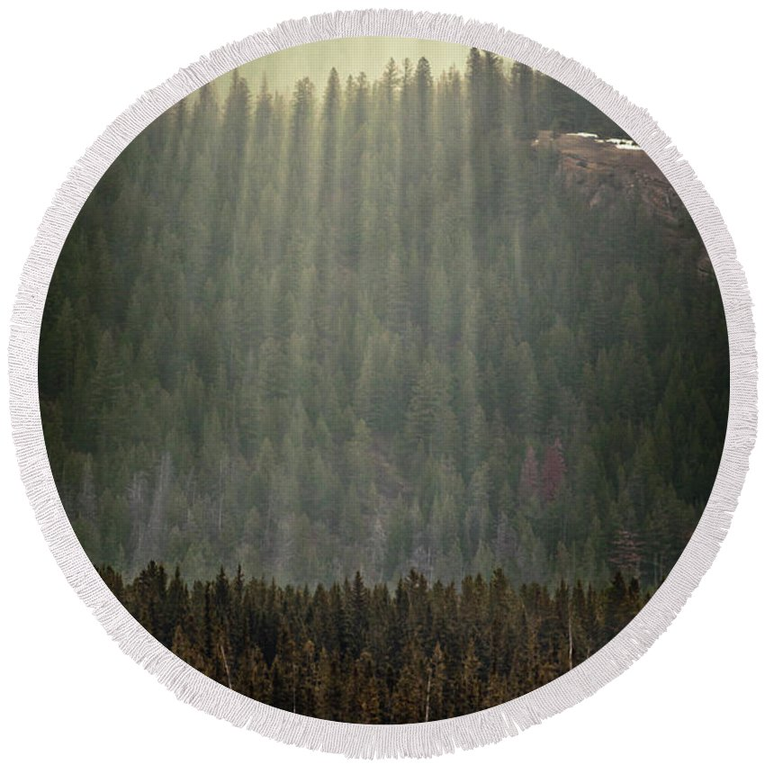 Mountain Round Beach Towel featuring the photograph Beams Of Sunlight Shine Over Old Growth by Christopher Kimmel