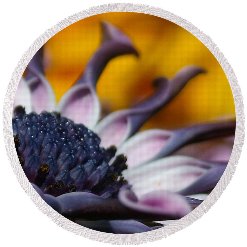 Flower Round Beach Towel featuring the photograph Beautiful by Line Gagne