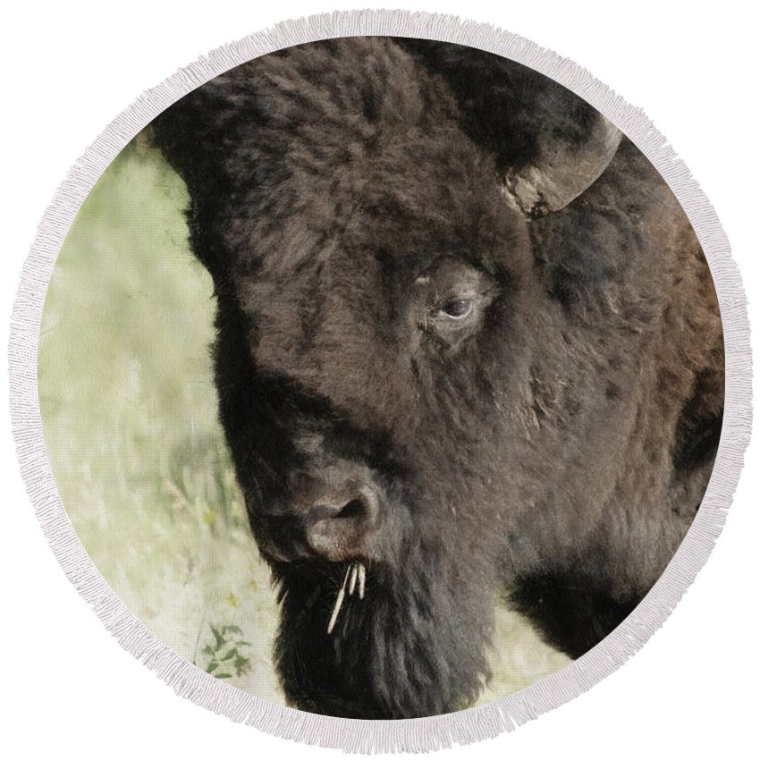 Buffalo Round Beach Towel featuring the digital art Buffalo Painterly by Ernie Echols