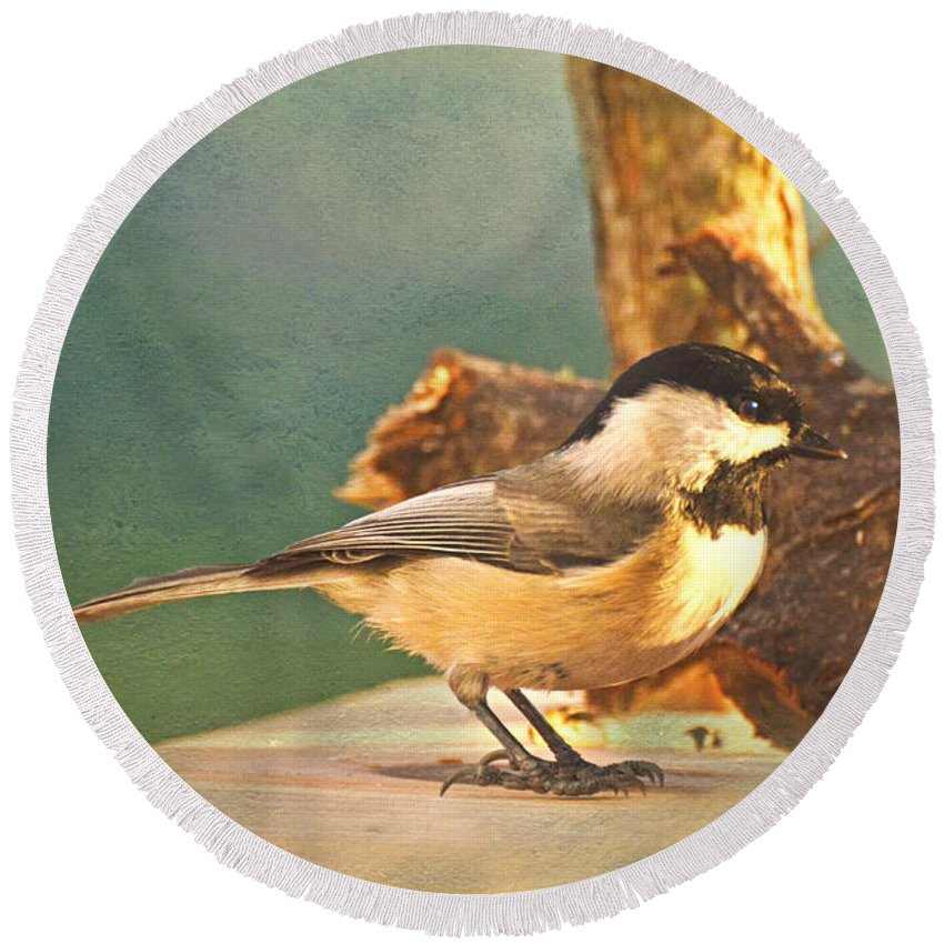 Nature Round Beach Towel featuring the photograph Chickadee by Debbie Portwood