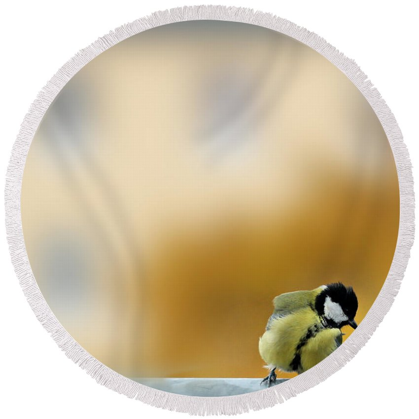 Chickadee Round Beach Towel featuring the photograph Chikadee by Heike Hultsch