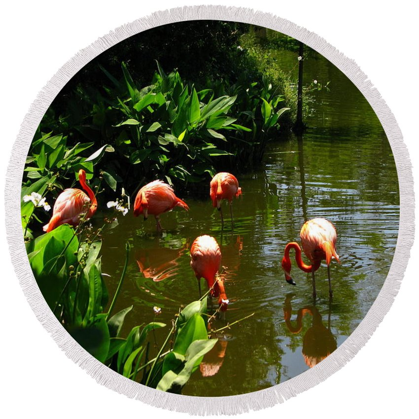 Flamingos Round Beach Towel featuring the photograph Flamingos by Greg Patzer