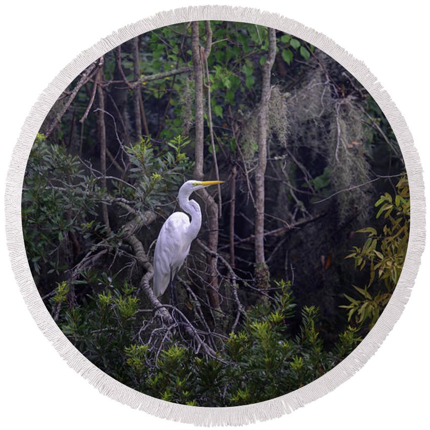 White Heron Round Beach Towel featuring the photograph Lowcountry Marsh White Heron by Dale Powell
