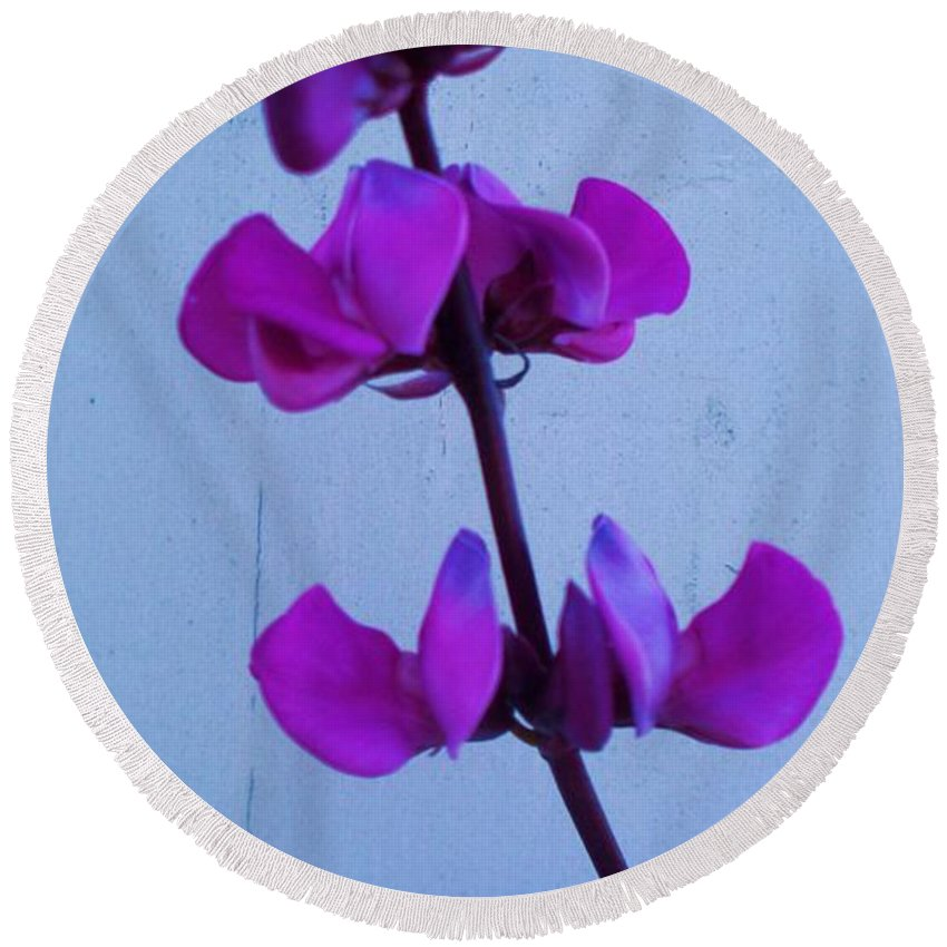 Lavender Flowers Round Beach Towel featuring the photograph Lavender Flowers by Eric Schiabor
