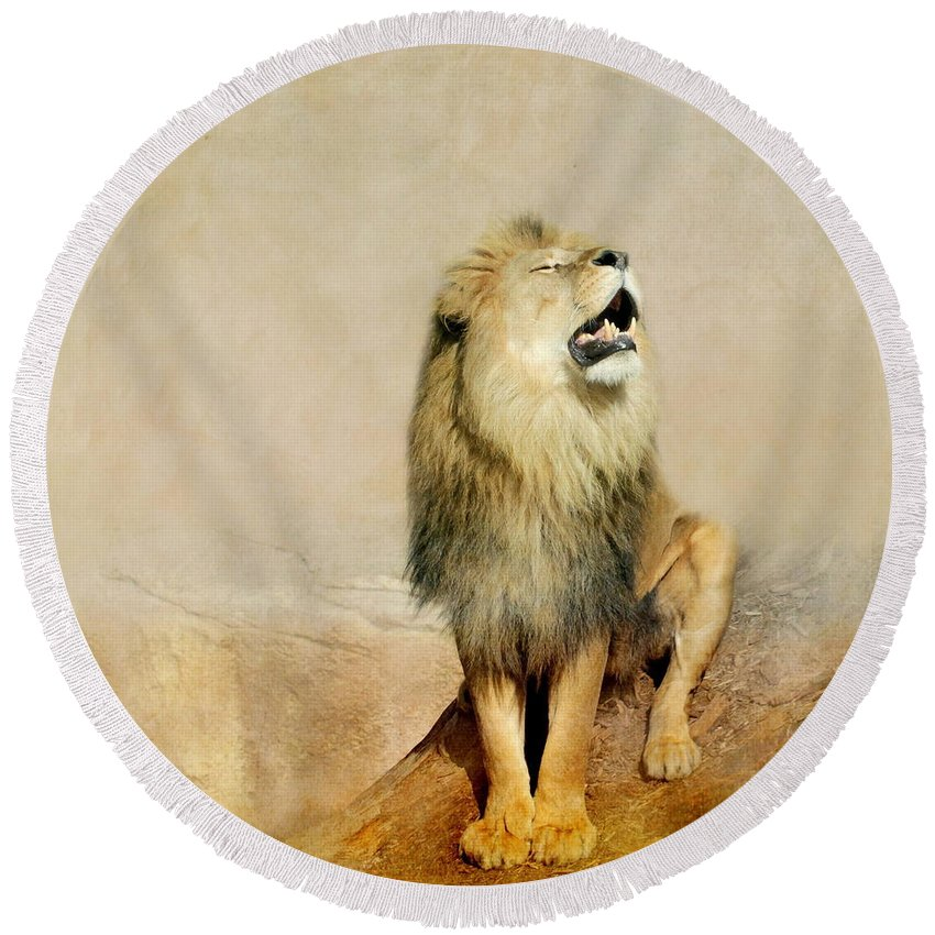 Lion Round Beach Towel featuring the photograph Lion by Heike Hultsch