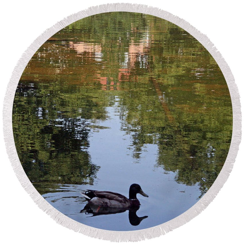 Duck Round Beach Towel featuring the photograph Living In Reflections by Cora Wandel