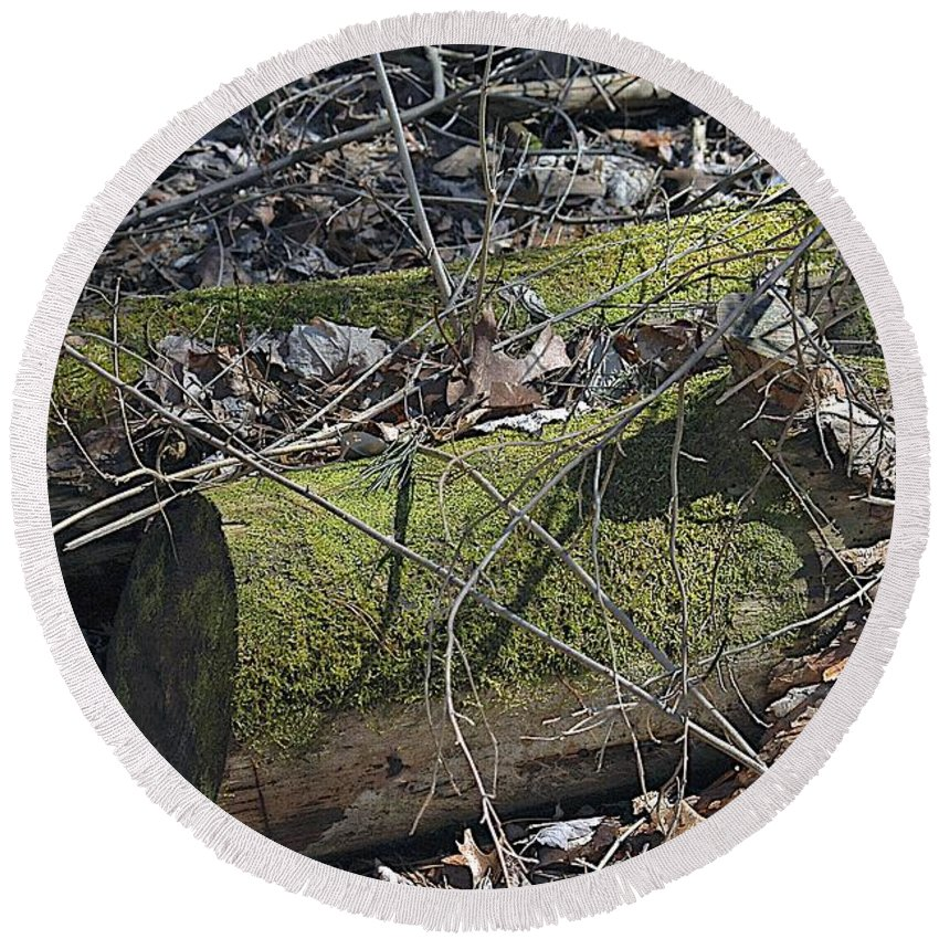 Forest Floor Round Beach Towel featuring the photograph Pair by Joseph Yarbrough