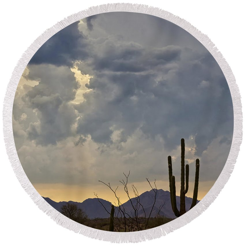 Arizona Round Beach Towel featuring the photograph The Beauty Of The Desert by Saija Lehtonen
