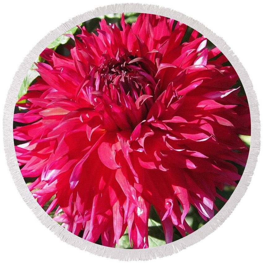 Mccombie Round Beach Towel featuring the painting Dahlia Named Mingus Erik by J McCombie