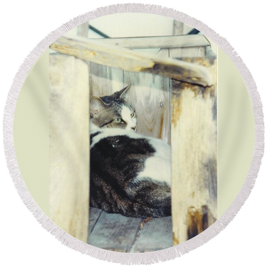Framed By A Box Round Beach Towel featuring the photograph Emmie by Robert Floyd