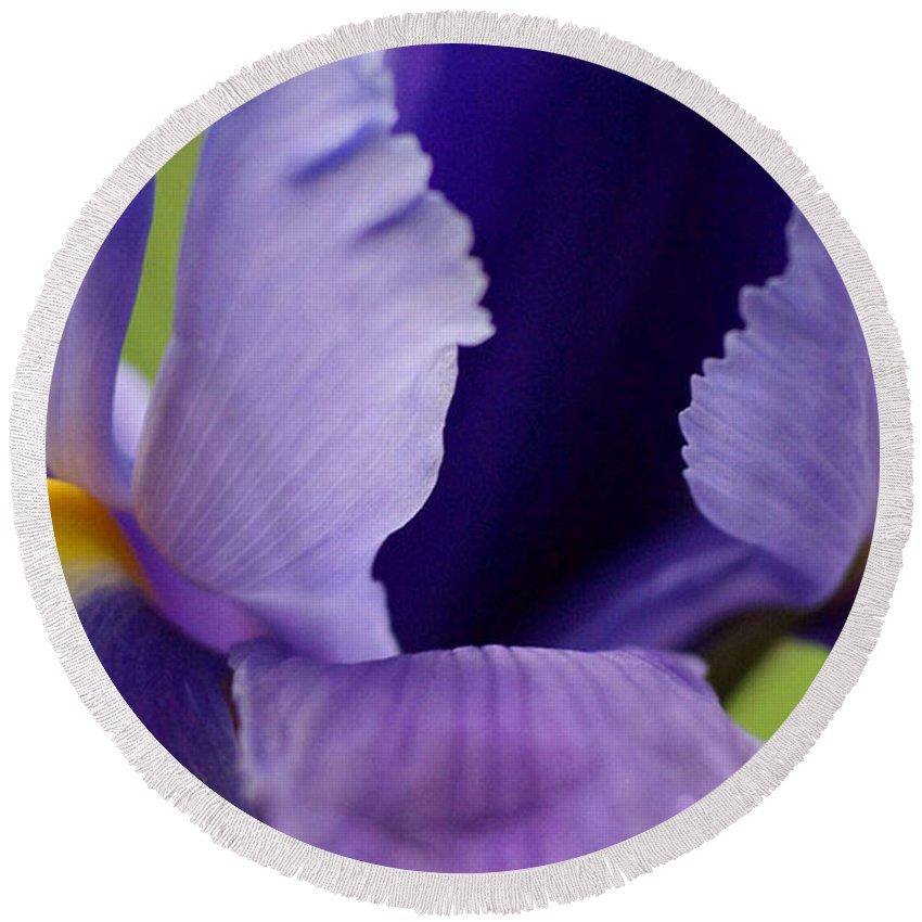 Purple Round Beach Towel featuring the photograph Purple by Carol Lynch