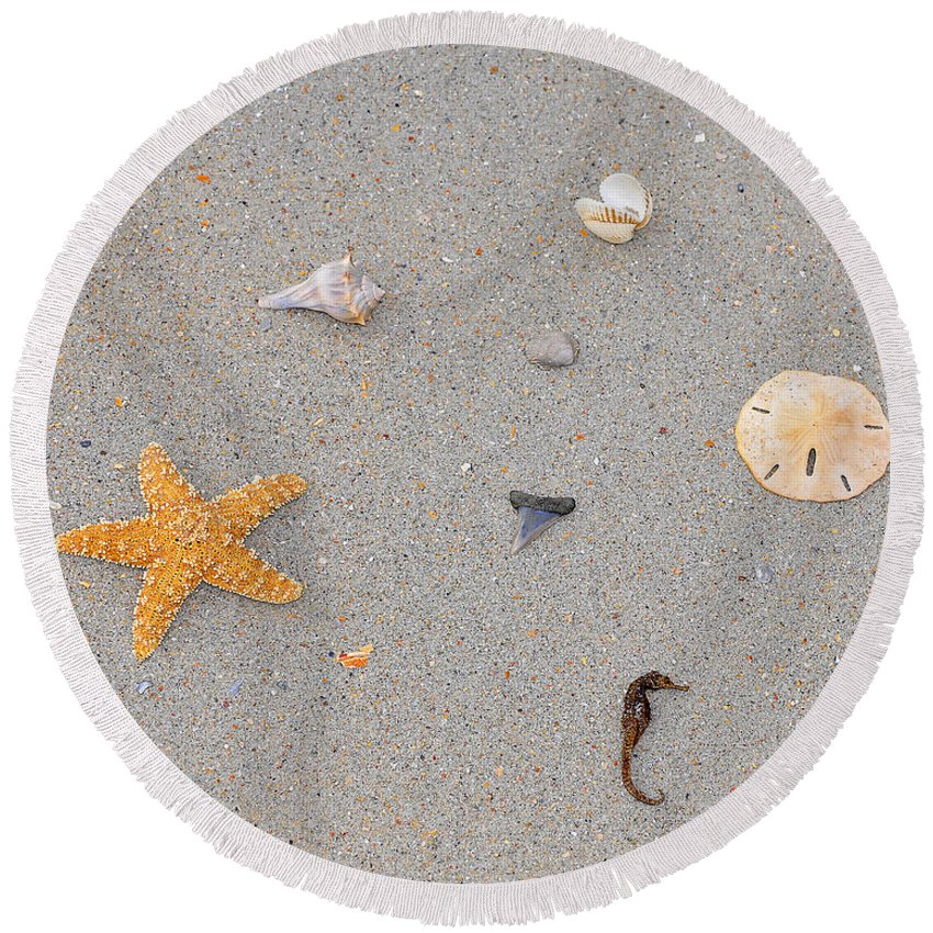 Sea Star Round Beach Towel featuring the photograph Sea Swag - Natural by Al Powell Photography USA