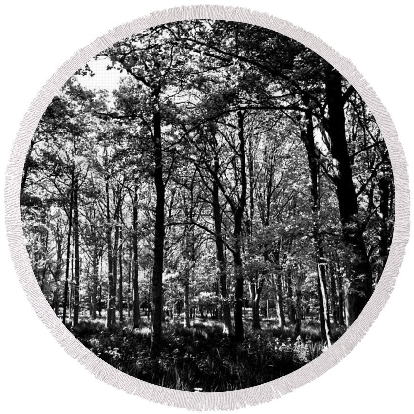 Tree Round Beach Towel featuring the photograph The Forest by David Pyatt