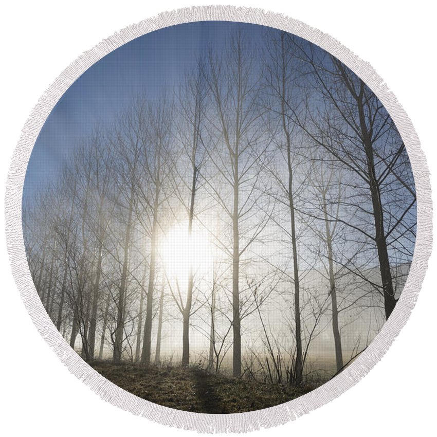 Trees Round Beach Towel featuring the photograph Trees On A Foggy Field by Mats Silvan