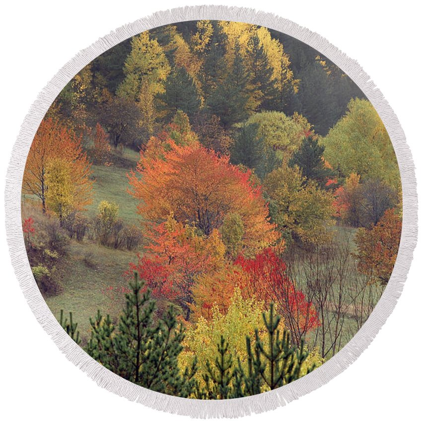 Fall Round Beach Towel featuring the photograph Fall Colours by Ayhan Altun