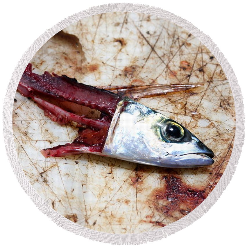 Dead Round Beach Towel featuring the photograph Fish Bait by Henrik Lehnerer