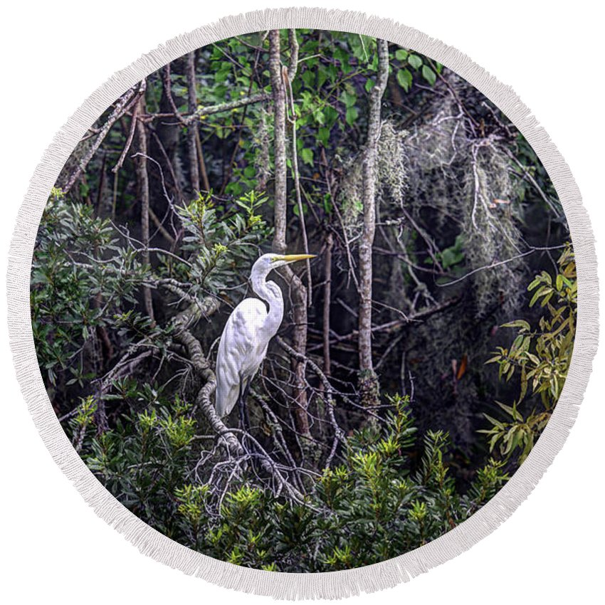 White Heron Round Beach Towel featuring the photograph Heron Colors by Dale Powell