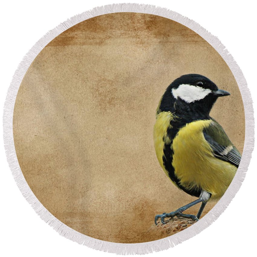 Tit Round Beach Towel featuring the mixed media Bird by Heike Hultsch