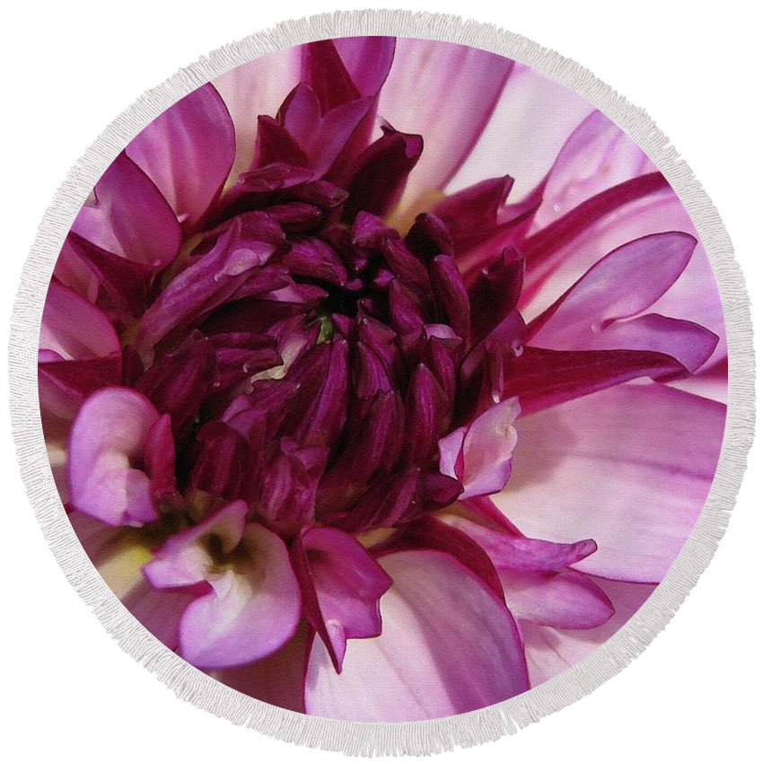 Dahlia Round Beach Towel featuring the painting Dahlia Named Lauren Michelle by J McCombie