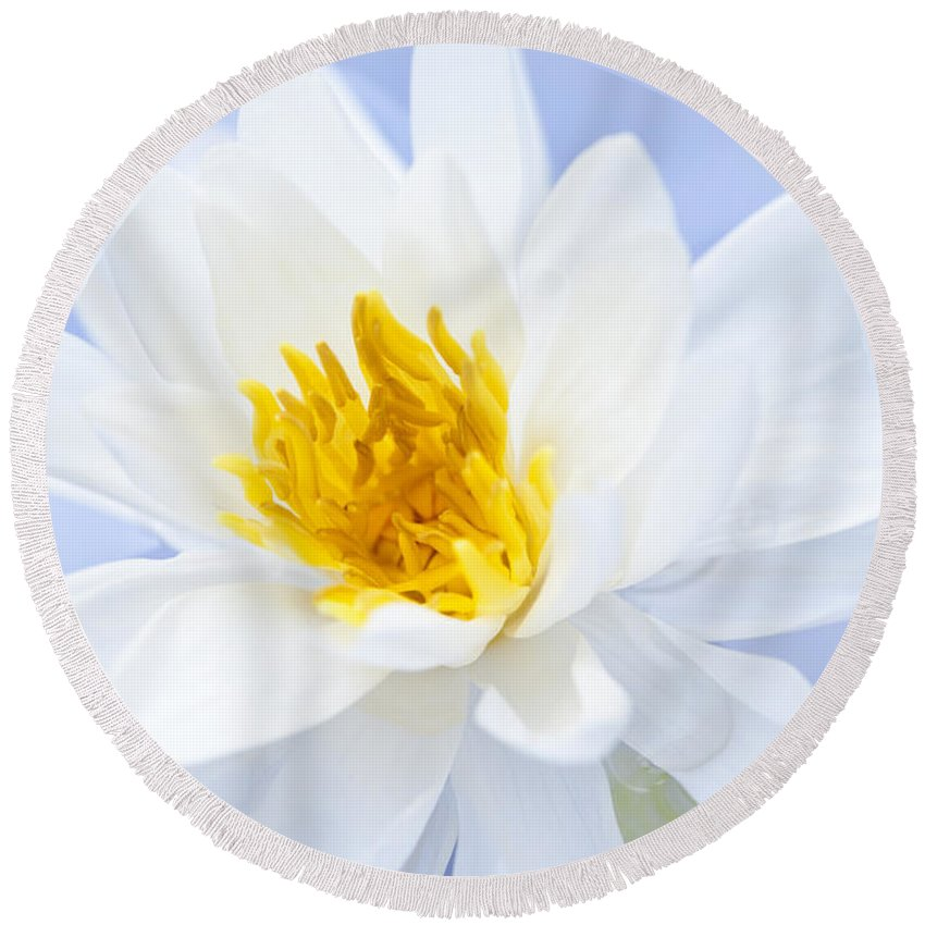 Lotus Round Beach Towel featuring the photograph Lotus Flower by Elena Elisseeva