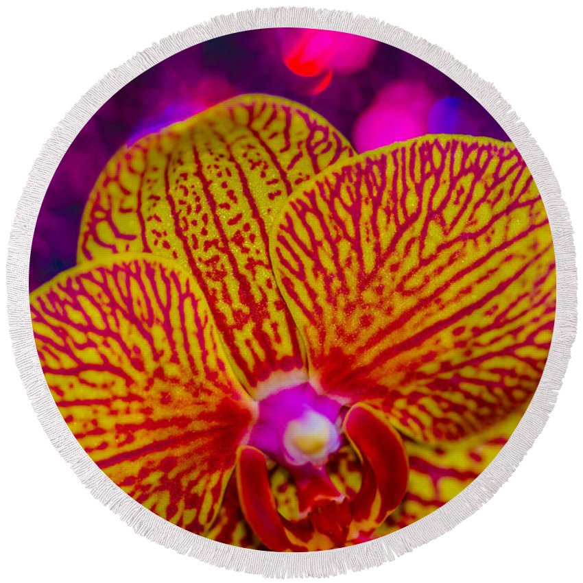 Round Beach Towel featuring the photograph Orchid by Gerald Kloss