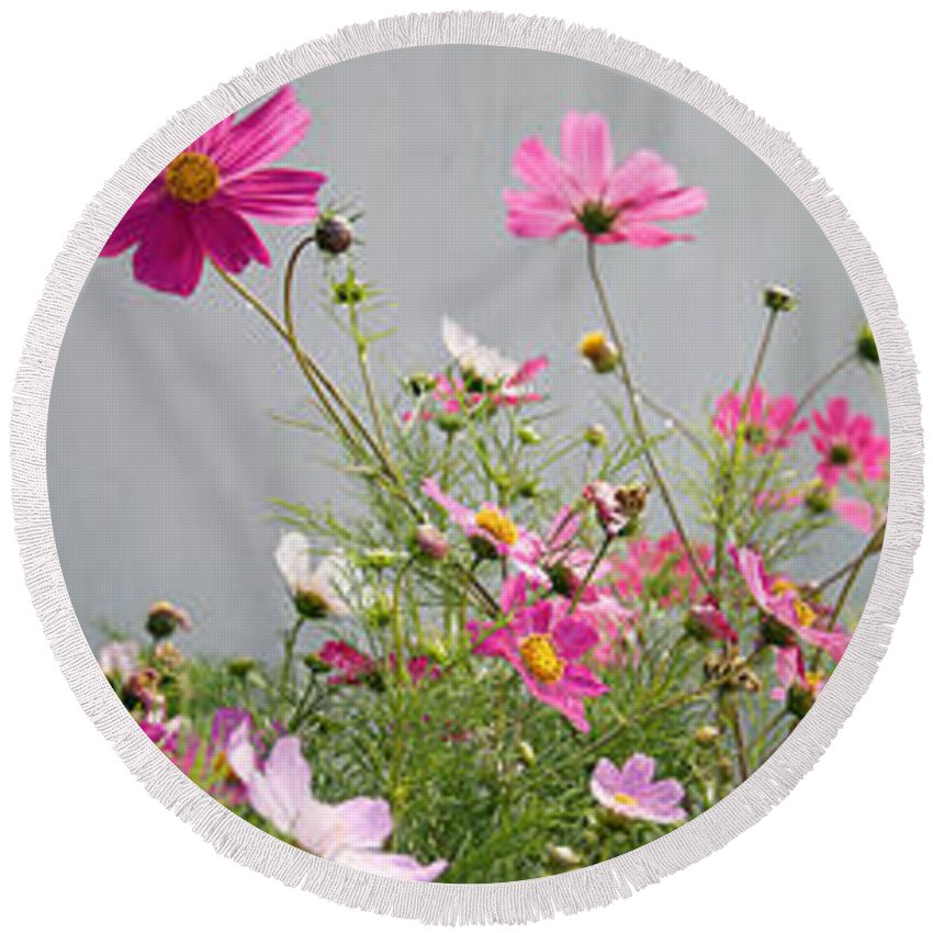 Photography Round Beach Towel featuring the photograph Close-up Of Flowers by Panoramic Images