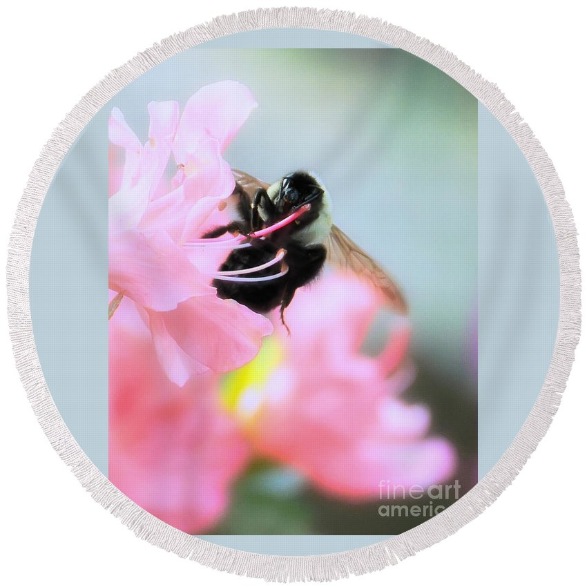 Floral Round Beach Towel featuring the photograph Bumble Bee And Azalea by David Perry Lawrence