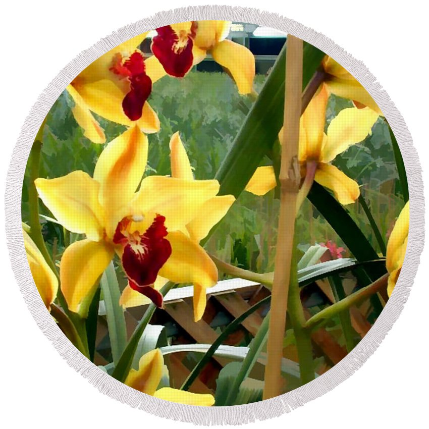 Orchid Orchids Cymbidium Tropical Tropics Exotic Flowers Floral Garden Greenhouse Round Beach Towel featuring the painting A Cage Of Canary Cymbidiums by Elaine Plesser
