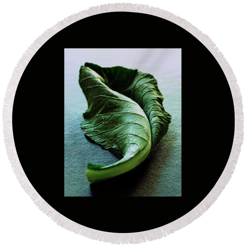 Nobody Round Beach Towel featuring the photograph A Collard Leaf by Romulo Yanes