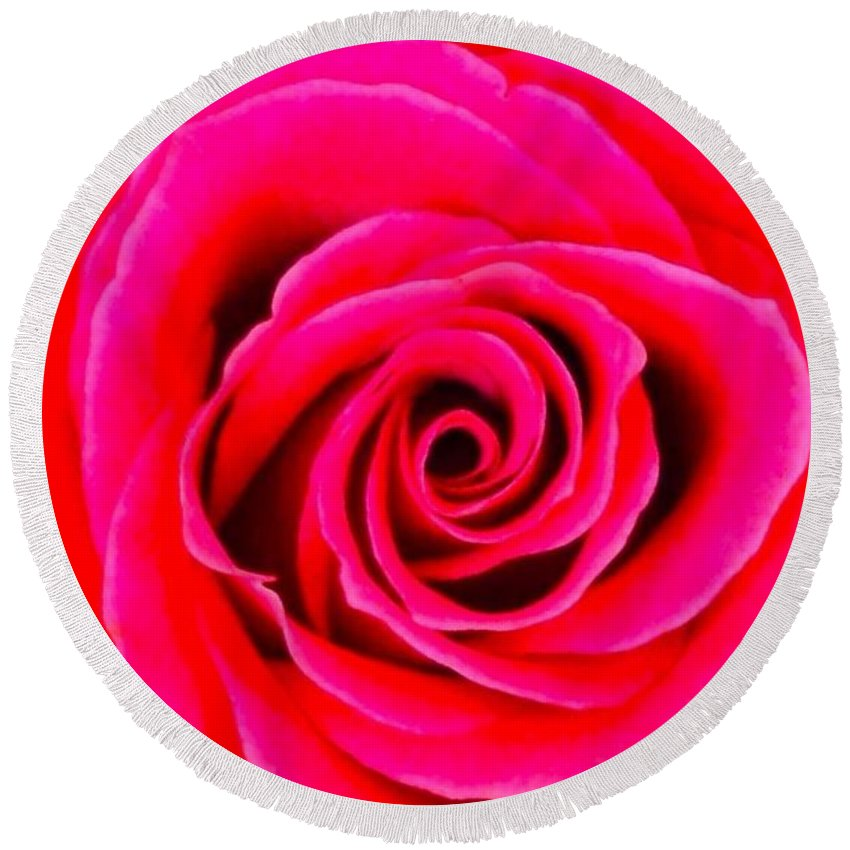 Roses Round Beach Towel featuring the photograph A Fuschia Pink Rose by Joan-Violet Stretch