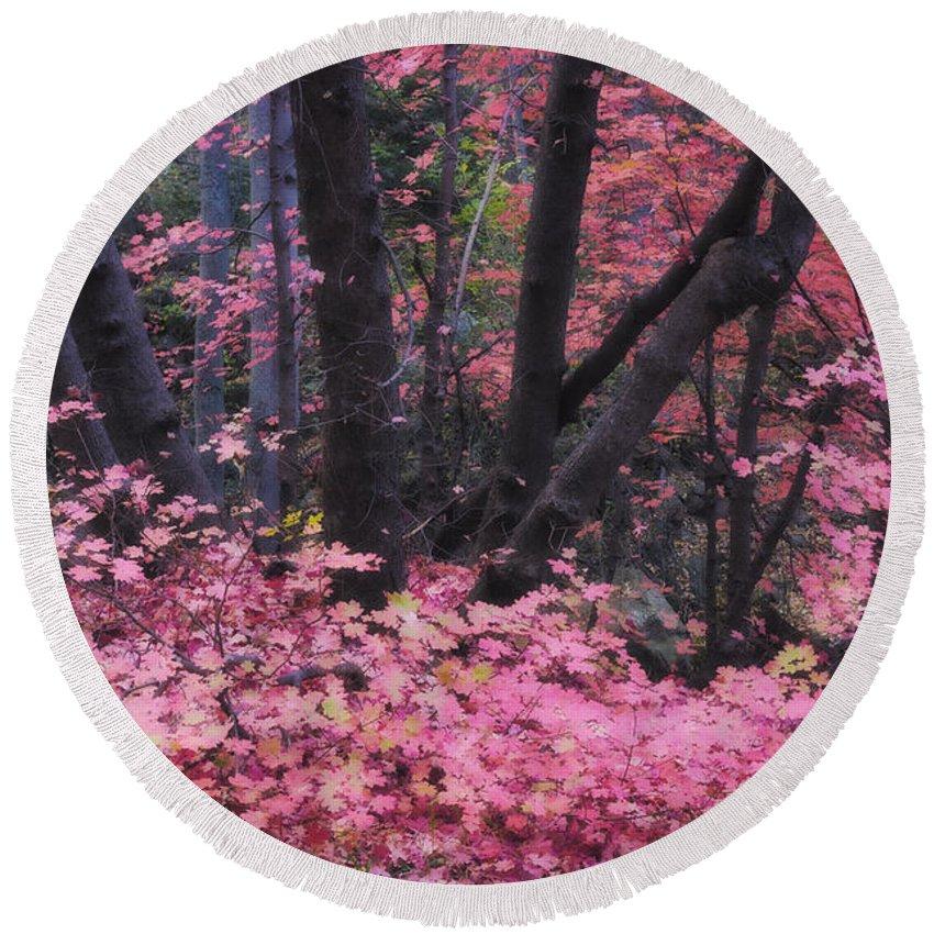 Pink Maple Tree Round Beach Towel featuring the photograph A Pink Autumn by Saija Lehtonen