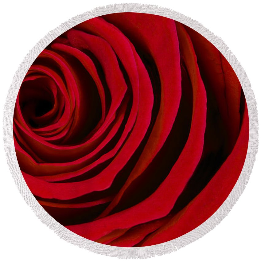 3scape Photos Round Beach Towel featuring the photograph A Rose For Valentine's Day by Adam Romanowicz