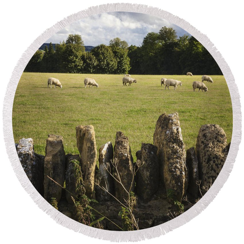Stone Round Beach Towel featuring the photograph A Sheep's Field by Margie Hurwich