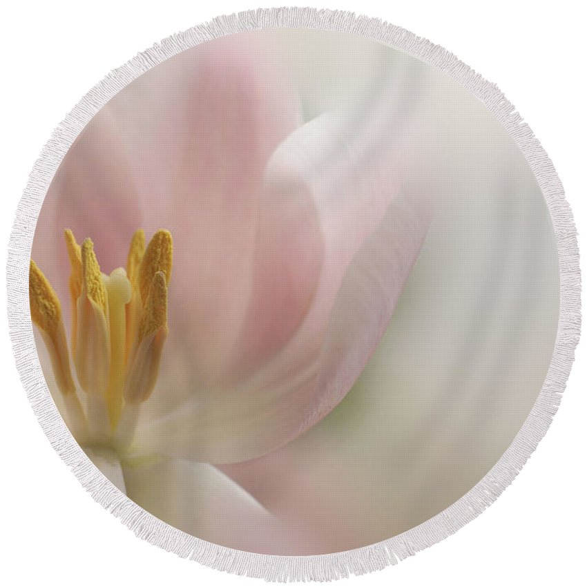 Floral Round Beach Towel featuring the photograph A Touch Of Pink by Annie Snel