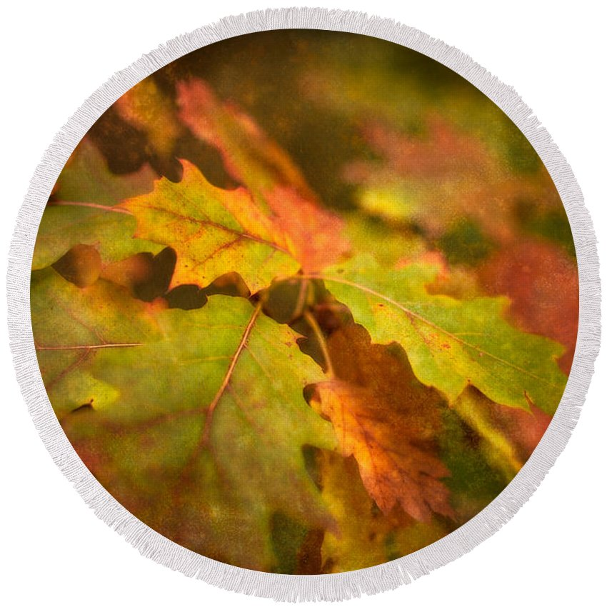 Abstract Round Beach Towel featuring the photograph A Vision Of Fall by Venetta Archer