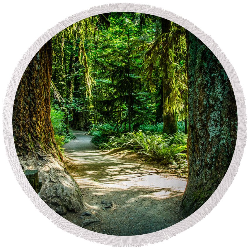 Old Growth Forest Round Beach Towel featuring the photograph Pathway Cathedral Grove by Roxy Hurtubise
