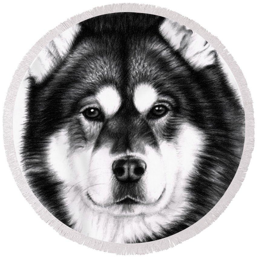 Dog Round Beach Towel featuring the drawing Alaskan Malamute Portrait by Nicole Zeug
