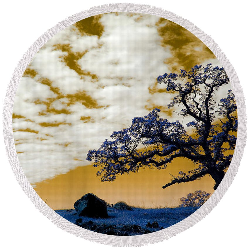 Lab Round Beach Towel featuring the photograph Alien Landscape 1 by Robert Woodward