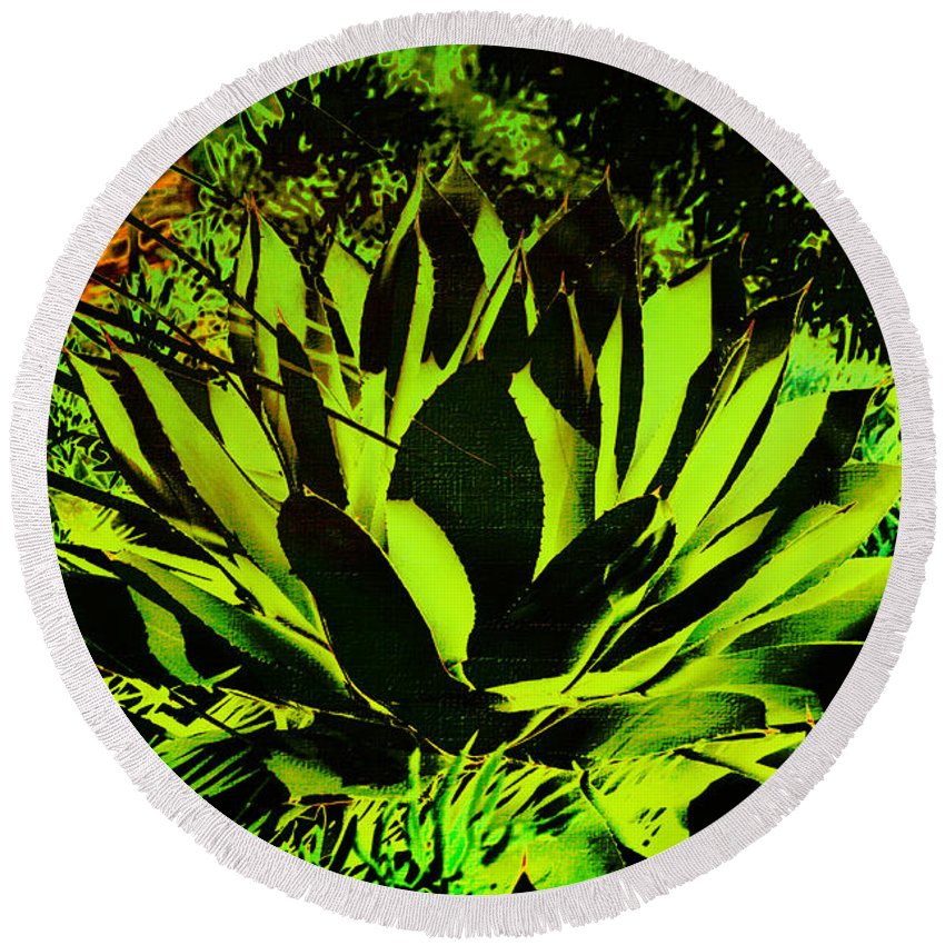 Aloe Round Beach Towel featuring the photograph Aloe by Judy Wolinsky