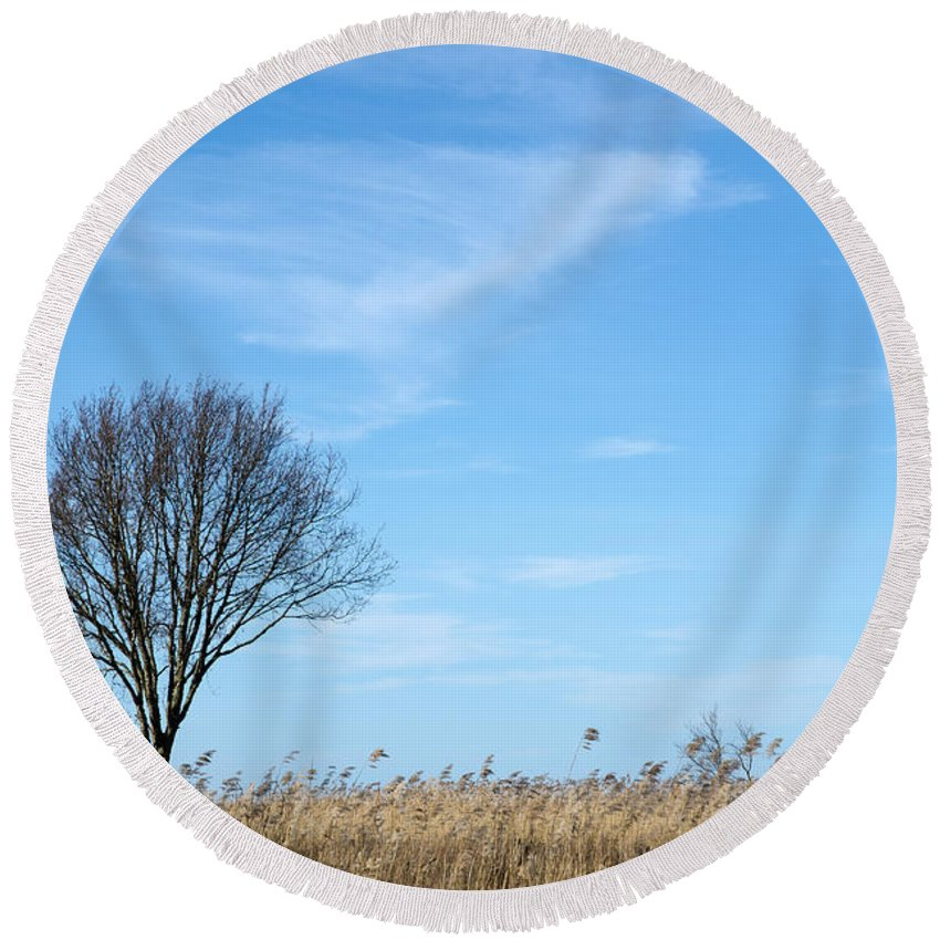 Alone Round Beach Towel featuring the photograph Alone Tree In The Reeds by Kennerth and Birgitta Kullman