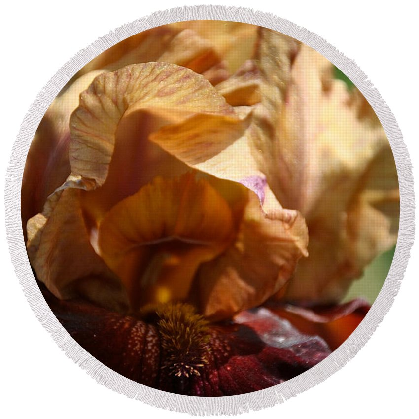Flower Round Beach Towel featuring the photograph Amber Iris Waves by Susan Herber