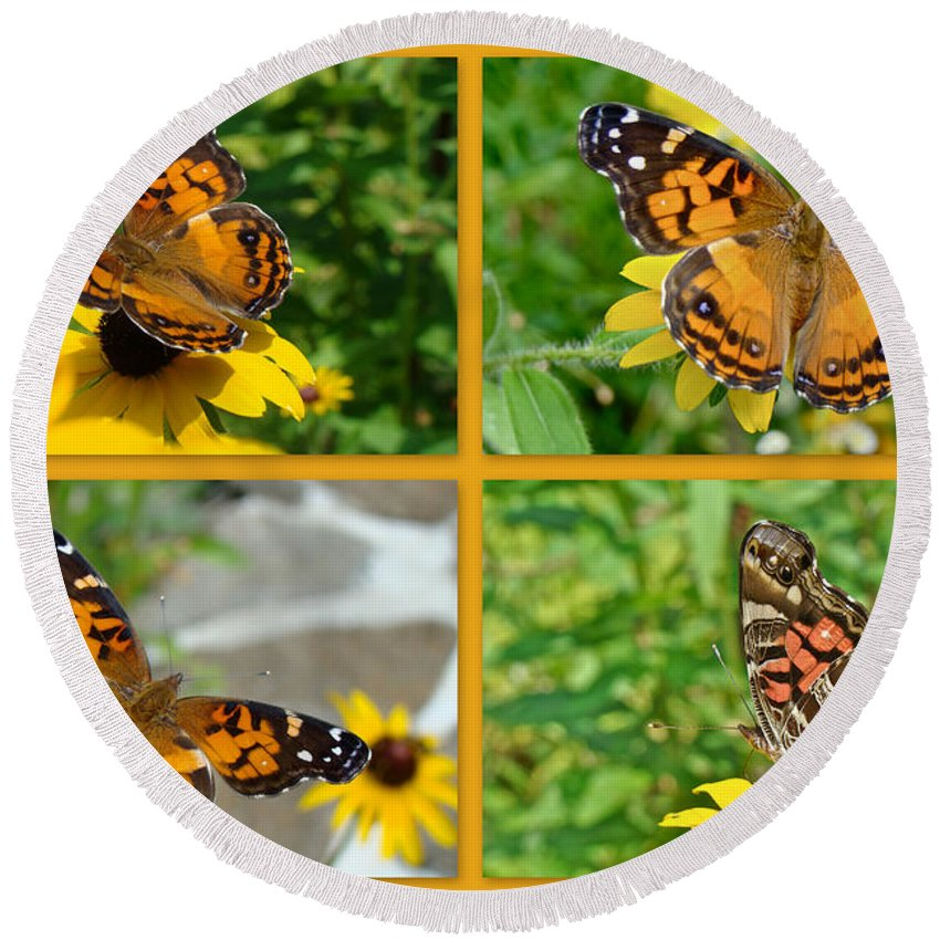 American Lady Butterfly Round Beach Towel featuring the photograph American Lady Butterfly - Vanessa Virginiensis by Mother Nature