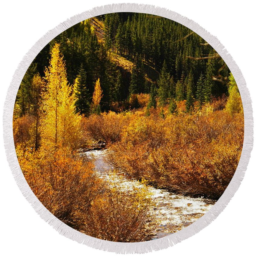 Autumn Round Beach Towel featuring the photograph An Autum Stream In Colorado by Jeff Swan