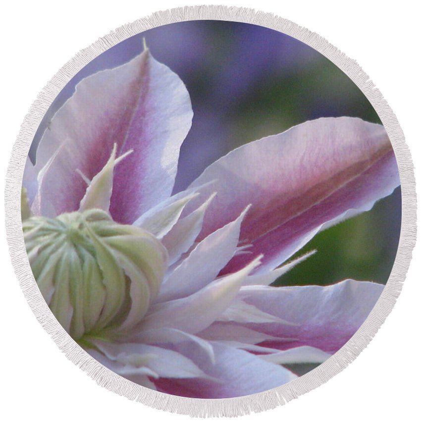 Clematis Round Beach Towel featuring the photograph An Exotic Clematis by Angela Davies